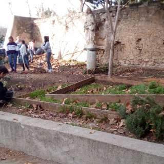 Projet : Réaménagement d'un espace jardin